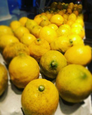 レモンの旬に。